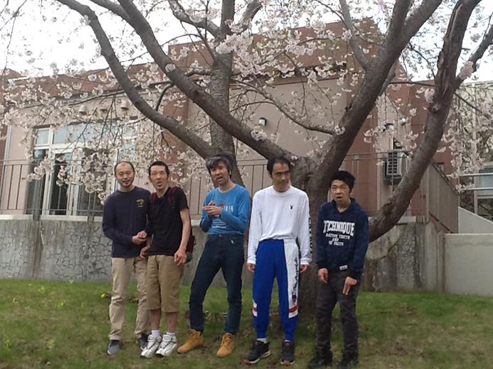 星ヶ丘寮 桜の木の下で