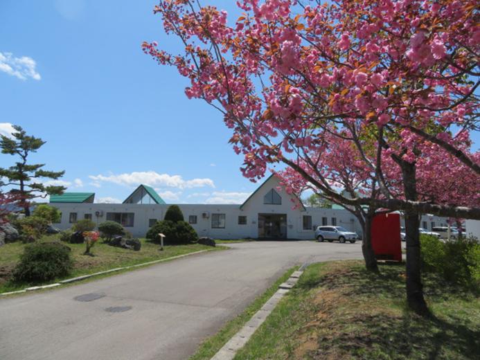 明生園 今年も桜が満開です