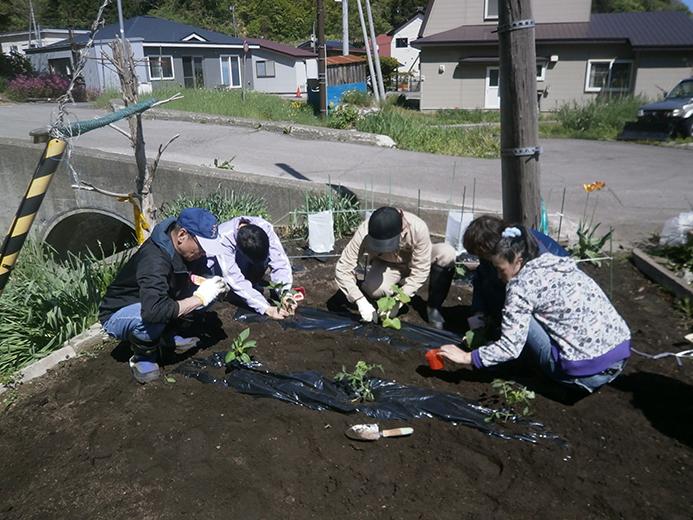 サポートかわつき 園芸クラブ苗植え