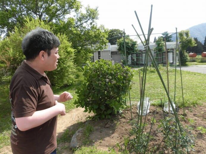 新生園「家庭菜園」