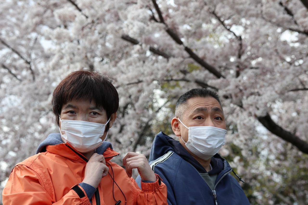 函館青年寮通所部 「桜の木の下で」